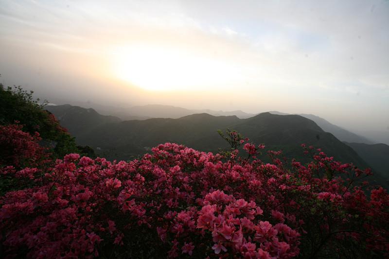 云雾山生态旅游风景区旅游开发总体规划